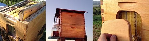flow hive la ruche autonome qui va r volutionner l apiculture bison futech. Black Bedroom Furniture Sets. Home Design Ideas